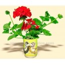 Promo Can Flowers