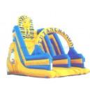 Promotion Inflatable Slide